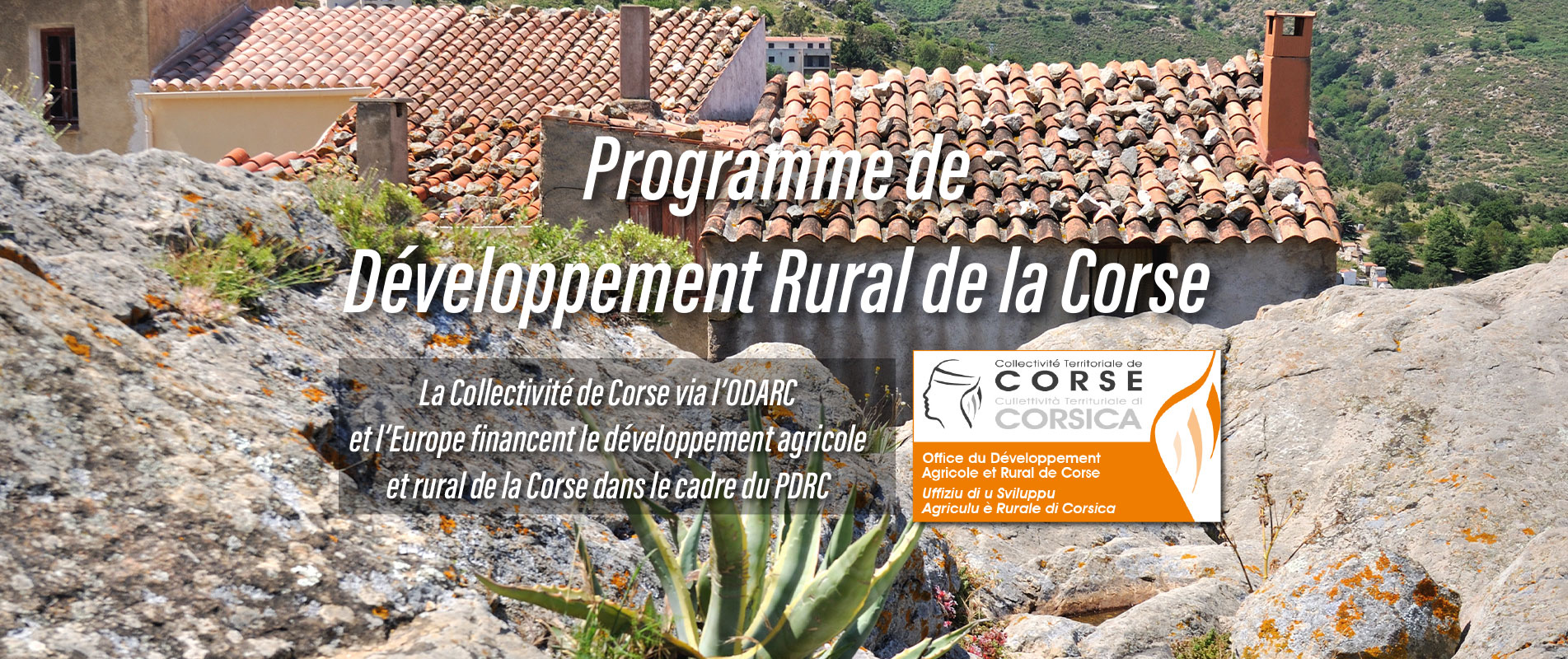 ODARC : Les appels à projets du Programme de Développement Rural de la Corse